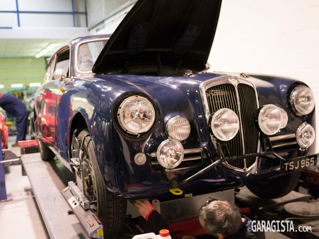 Lancia Aurelia - Rally ready