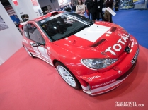 Richard Burns Peugeot 206 WRC